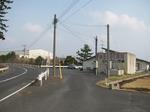 090228nishihamaimo (3).jpg